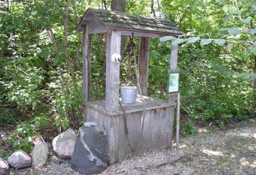 minnesota-troll-park-holly-skogen-starbuck