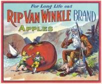 rip-van-winkle-apples