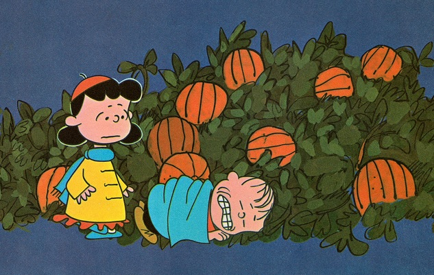 50920dedb minnesota-hennepin-county-great-pumpkin-linus-sleeping-patch