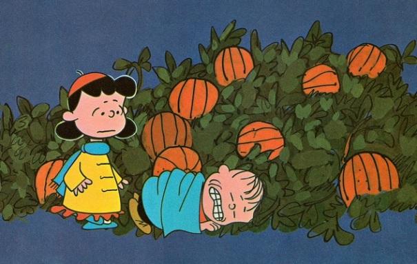 minnesota-hennepin-county-great-pumpkin-linus-sleeping-patch