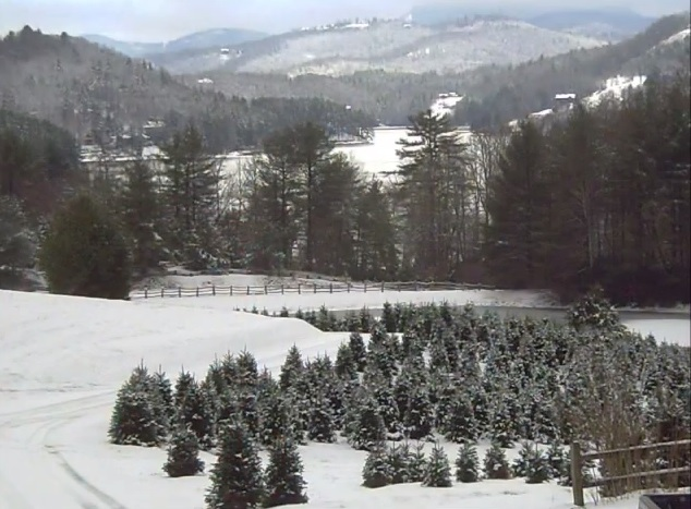 the 80 acre family owned farm for over 30 years sells fraser fir christmas trees wreaths garland and also offers venues for weddings other events - Christmas Tree Farms In North Carolina