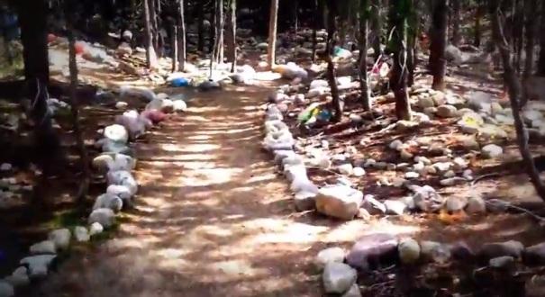 utah-uintas-fairy-forest-path