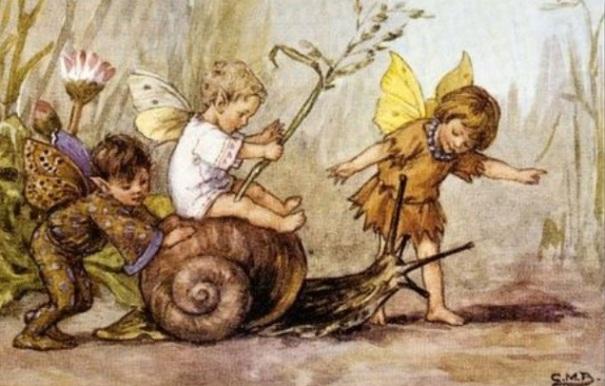 fairies-snail